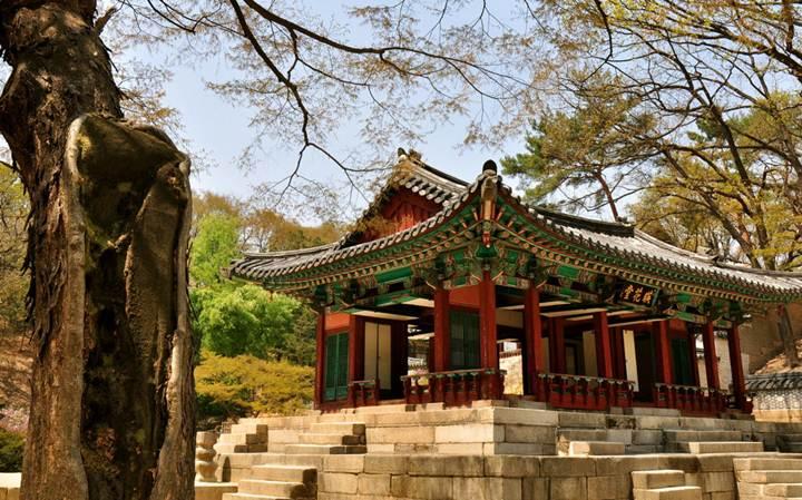 Международные перевозки из Южной Кореи