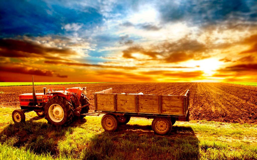 Логистика, международные перевозки для сельского хозяйства