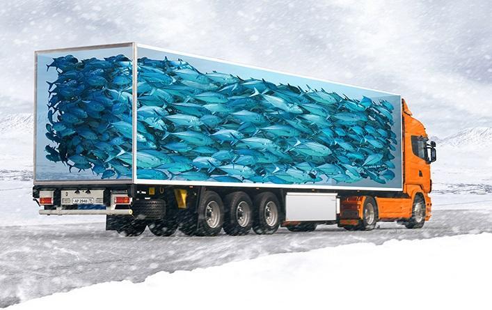 Доставка скоропортящихся продуктов из Японии в Украину
