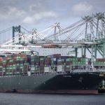 Новые экологические нормы могут подтолкнуть ставки на морские контейнерные перевозки вверх