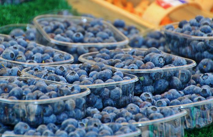 Перевозка голубики за границу - экспорт голубики из Украины